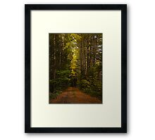 Autumn Journey Framed Print