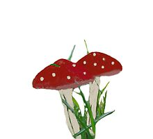 Cute baby red dotted mushrooms  by bardenne