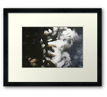 First Layer of Consciousness Framed Print