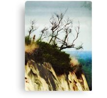 Surviving on the Cliff Top  Canvas Print