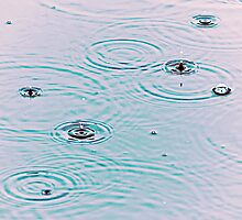 Drops of Rain by Lynnette Peizer