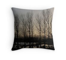 Wintry Dawn Throw Pillow