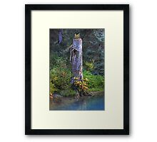 Tree trunk (HDR) Framed Print