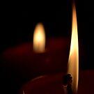 The flame by Luis Alberto Landa Ladrón de Guevara