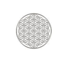 Flower of life - Silver, healing & energizing Photographic Print