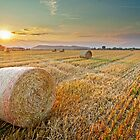Hay bales at Sunset by LexiTheMonster