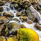 Yellow Rock by Tony Shaw