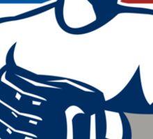 American Baseball Pitcher Gloves Retro Sticker