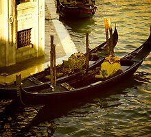 Venezia by Alex Volkoff