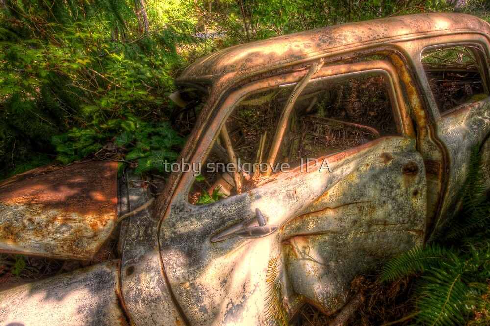 The Car at Squirrel Cove by toby snelgrove  IPA