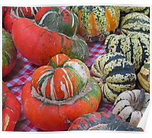 Turban Squash and Friends Poster