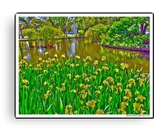 Royal Exhibition Garden, Melbourne Canvas Print