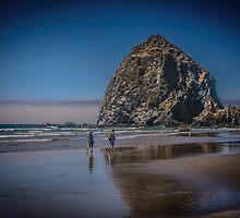 Cannon Rock by Steve Walser