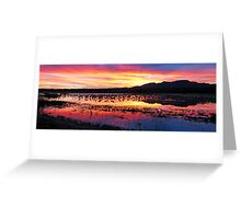 bosque del apache Greeting Card