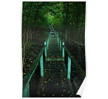Crothers Woods Staricase Poster