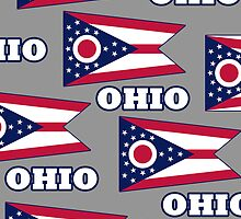 Smartphone Case - State Flag of Ohio - Named V by Mark Podger