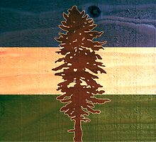 The Doug Flag on Cedar by cascadianhiker