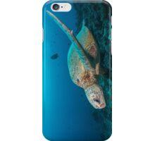 Turtle reef iPhone Case/Skin