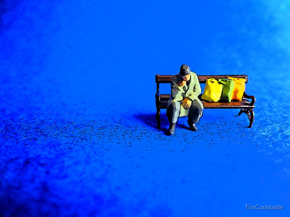 Lonely on a park bench! by TimConstable