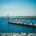 A Flock of Seagulls by comeinalone