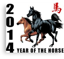 2014 Year of The Horse Canvas Print