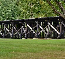 Beautiful Trestle by Eileen Brymer
