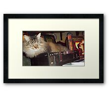 Mousey Tongue is going for a trip Framed Print