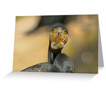 great cormorant Greeting Card