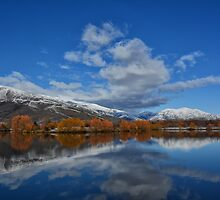 Reflections of a Winter Morning by Linda Cutche