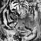 Black White Vintage Layered Tiger by silvianeto