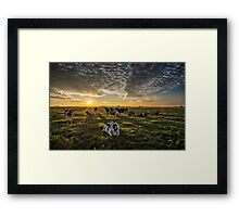 Cows Portrait Framed Print