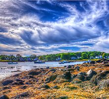 Incoming Tide by Bruce Taylor