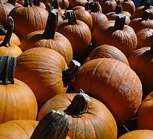 Pile O Pumpkins by vigor