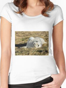 Grey Seal Pup Women's Fitted Scoop T-Shirt