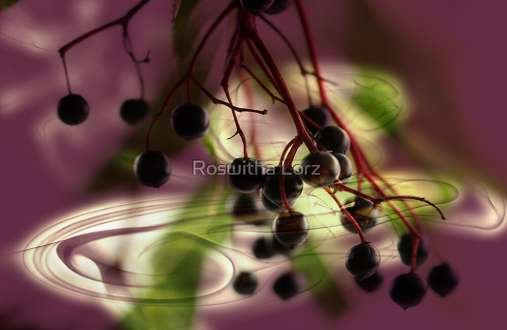Elderberry lightning by RosiLorz