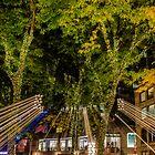 Fall Night in Boston. by LudaNayvelt