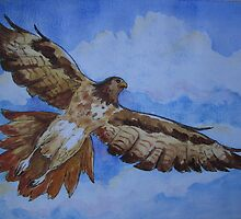 Red-Tailed Hawk by Jeanne Vail