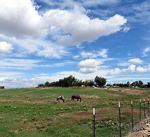 Beautiful Weather On The Farm, Idaho by trueblvr