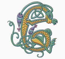 Celtic Illumination - Dragon Knot by William Martin