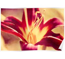 Red Lily Flower - Textured Effect Poster
