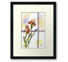 Irises in the Window Framed Print