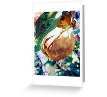 Pears Sunkissed Greeting Card