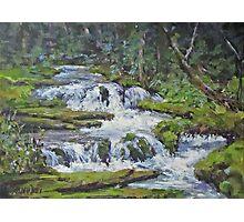 "Original Acrylic ""Forest Creek"" Landscape Painting Photographic Print"
