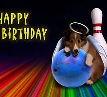 Bowling Birthday Sheltie Puppy by jkartlife