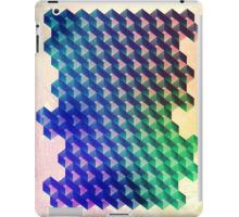 Mosaic 1 iPad Case/Skin