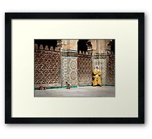 Sun bathing Framed Print