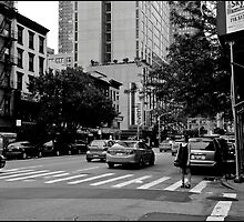 new yorker by Peter Maloney