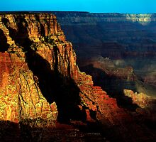 Standing Tall by American Southwest Photography