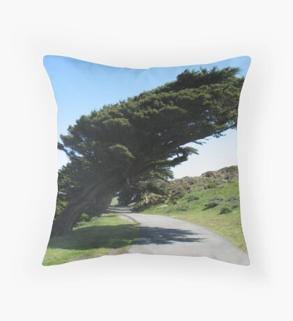 Point Reyes Wind Blown Trees Throw Pillow