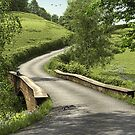 Country Lane Stone Bridge by Walter Colvin
